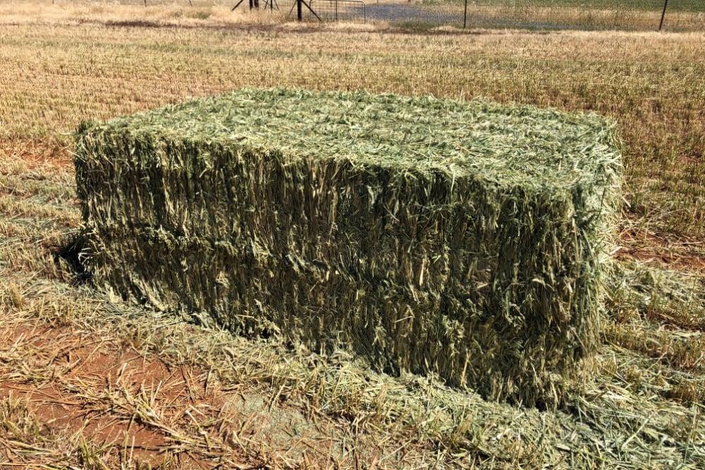 Single Hay Bale