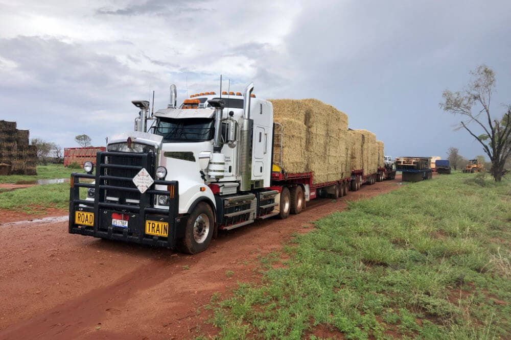 Nutritional Feed Supplies Hay Delivery